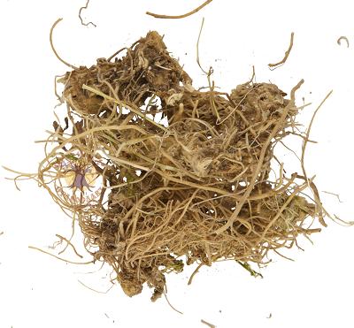 купить травяной сбор для повышения потенции