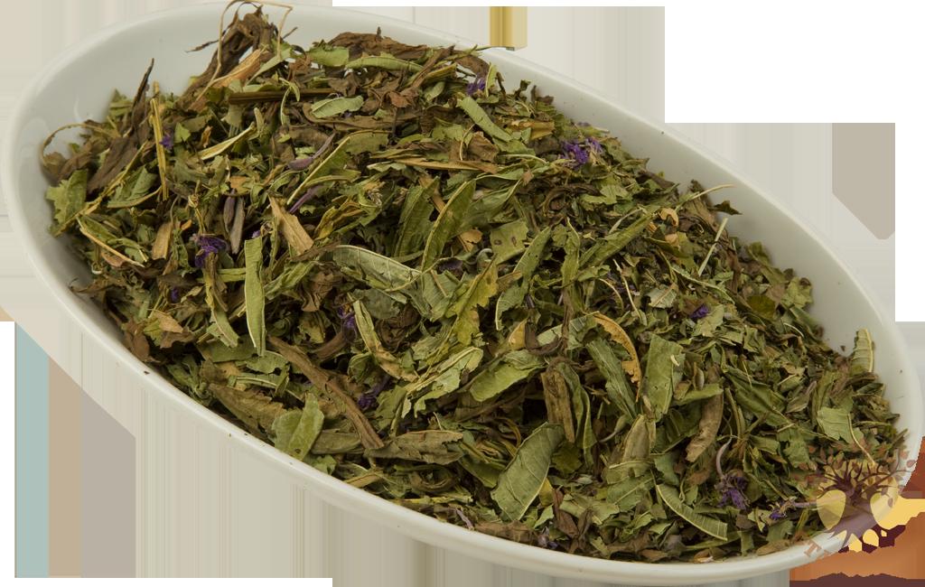 иван чай  и описание