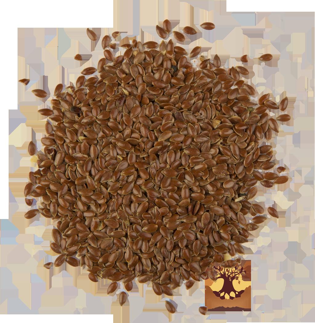 семена льна от холестерина